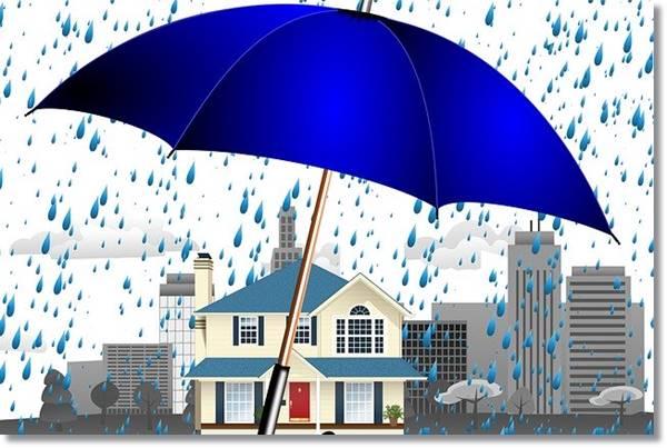 雨天用大きな傘