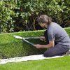 お墓に植木はダメ?いえ、問題の本質は管理する側です