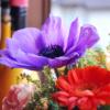 お墓参りの花の種類や値段、長持ちさせる方法や注意する事は?